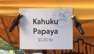 ハワイで見つけためっちゃ美味しいパパイヤ&黒バナナのご紹介!