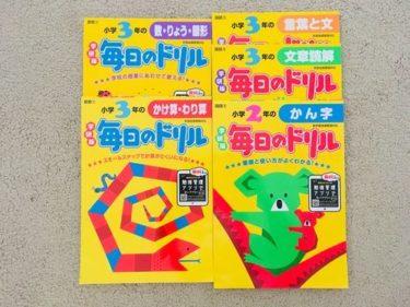 日本語維持は?進行形バイリンガールパート 日本語維持編1【ハワイ移住2年】