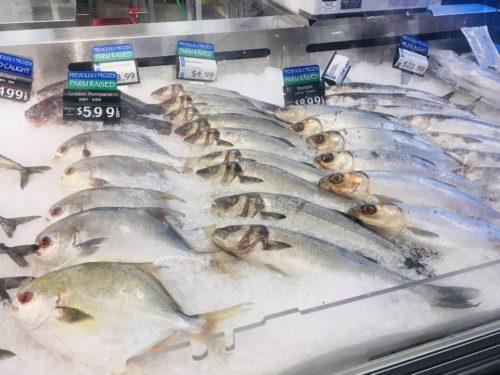 Hマート魚売り場1
