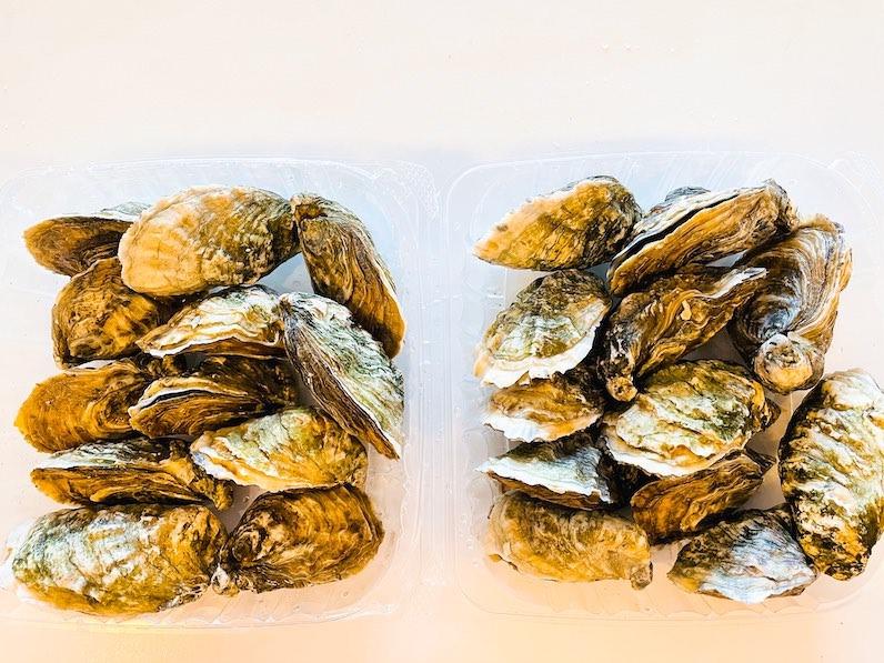 クアロアランチ生牡蠣