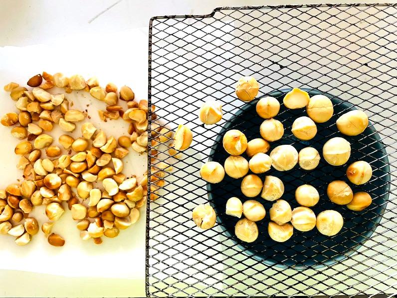 ハワイ産マカデミアナッツを選別する