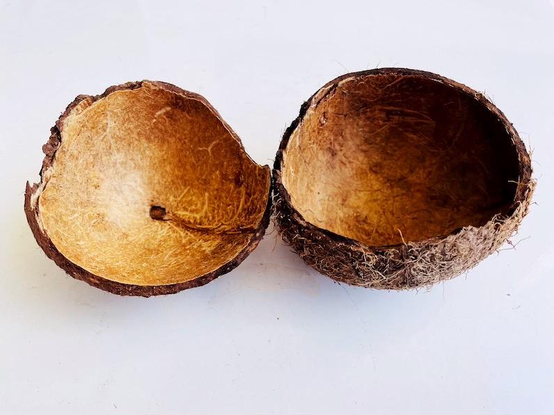 ココナッツのカラ