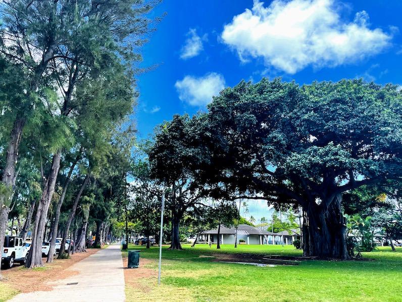 カピオラニビーチパークの道